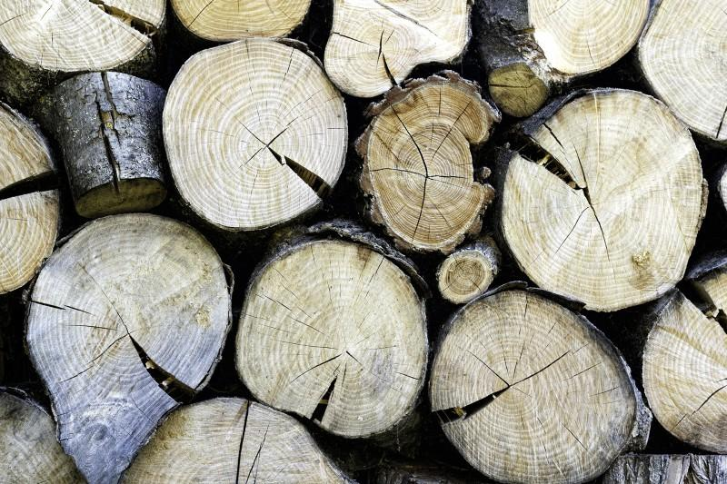 Hout_4