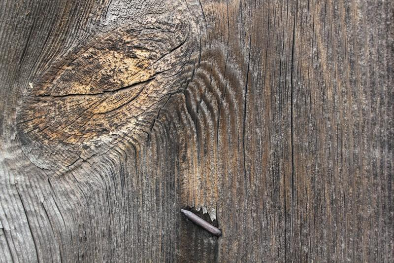 Hout_2